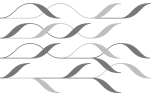 KdFS-Logo-Grey-Neg-2014